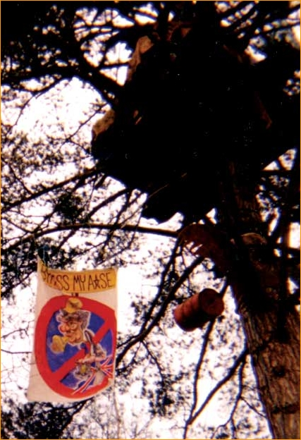"""""""Bypass my Arse"""" - my first banner, made for tree-protestors blocking the Newbury Bypass, around 1997"""