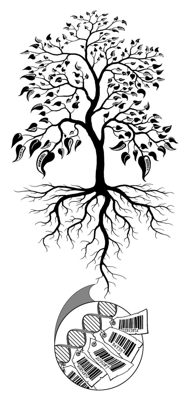 barcode_tree_2011