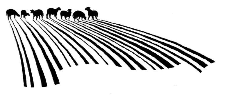 lambs_barcode_2002